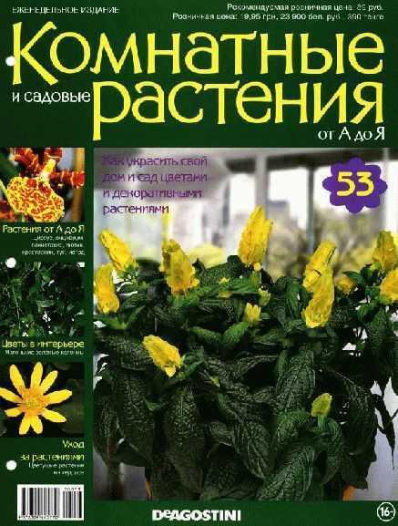 Комнатные растения №53 (2015) pdf, туя, циссус