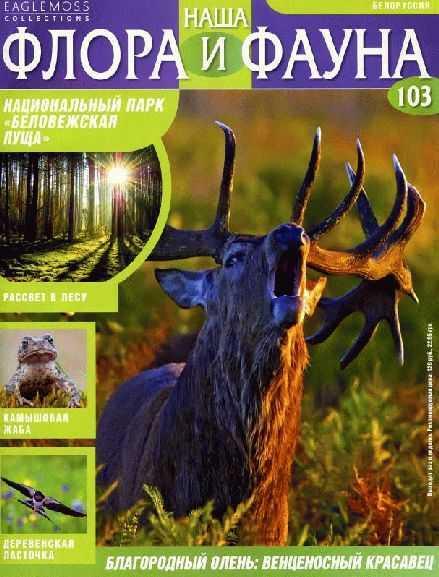 Наша флора и фауна №103 2015 pdf