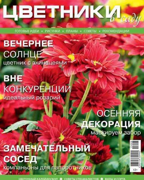 Цветники в саду №8 (август 2015)