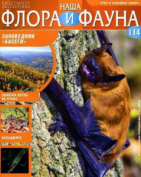 Журнал Наша флора и фауна №114 (2015) читать PDF