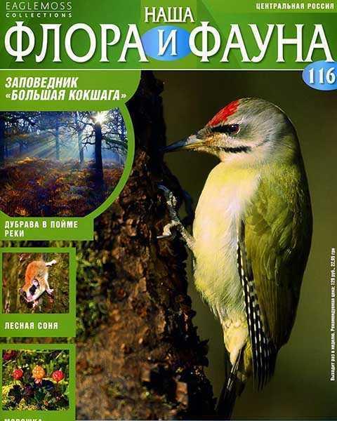 Журнал Наша флора и фауна № 116 (2015)