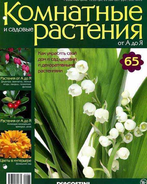 Журнал Комнатные растения № 65 (2015) читать PDF