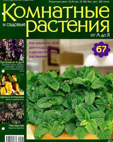 Журнал Комнатные и садовые растения от А до Я №67