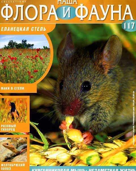 Журнал Наша флора и фауна № 117 (2015) читать PDF