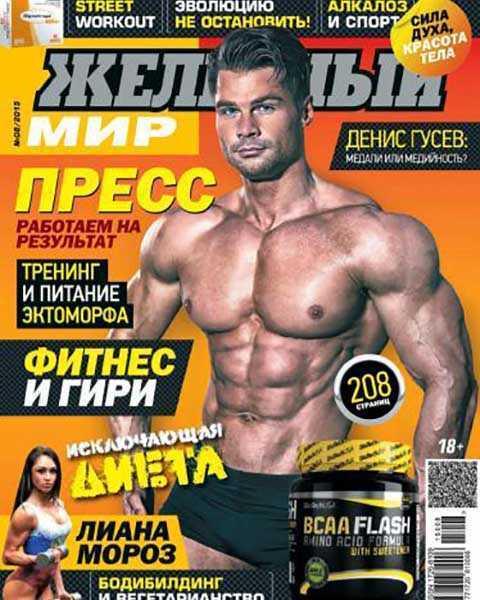 Журнал Железный мир № 8 август 2015 читать PDF