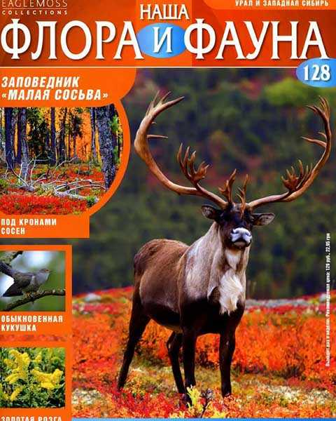 Журнал Наша флора и фауна №128 (2015)
