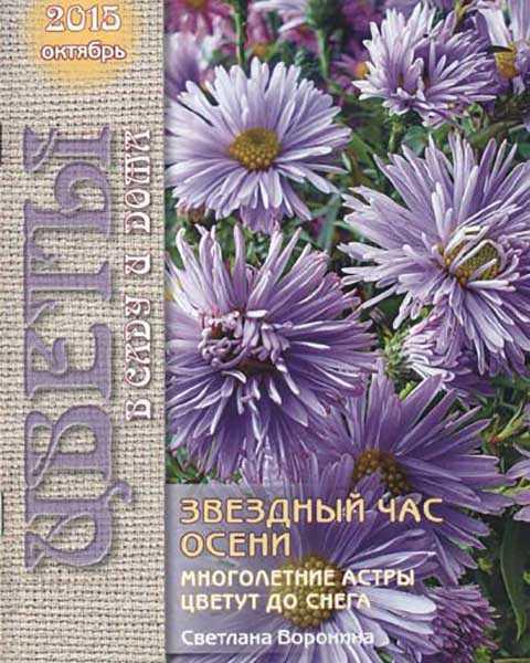 Цветы в саду и дома №10 октябрь 2015