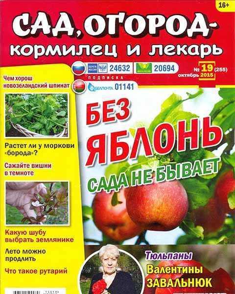 Сад, огород – кормилец и лекарь №19 октябрь 2015