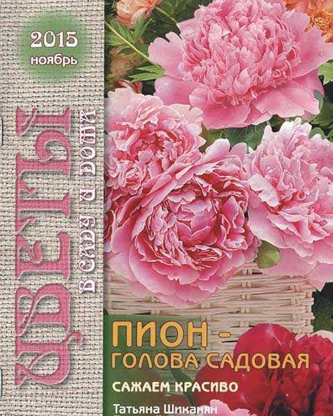 Пионы, Цветы в саду и дома №11 ноябрь 2015