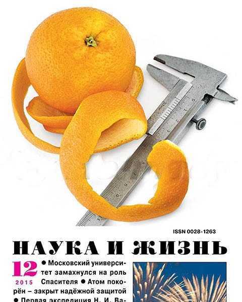 Апельсин, Наука и жизнь №12 декабрь 2015