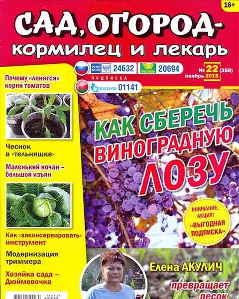 Сад огород кормилец и лекарь №22 2015