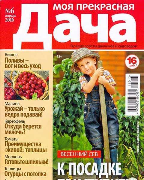 Журнал Моя прекрасная дача №6 (2016) читать онлайн