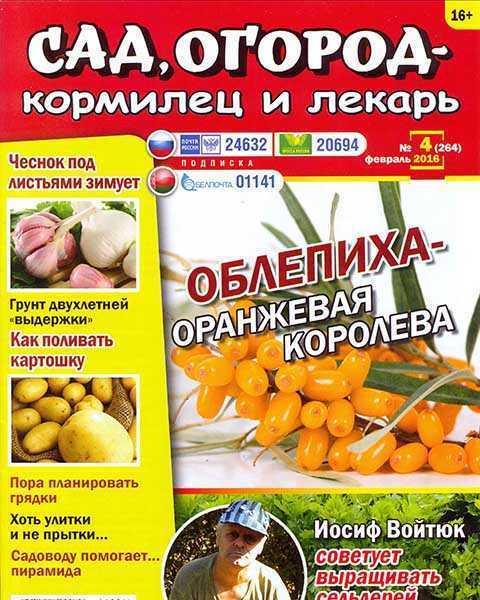 Журнал Сад, огород – кормилец и лекарь №4 (2016)