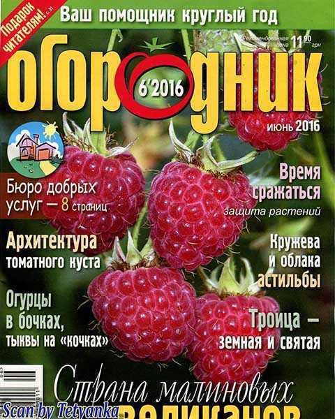 Малина, Журнал Огородник №6 июнь 2016
