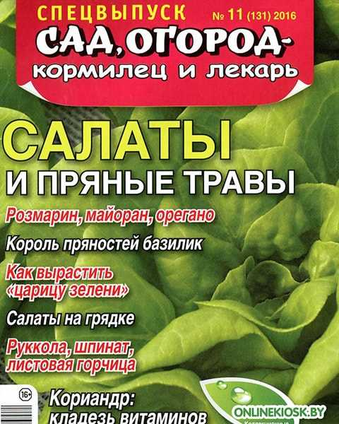 Журнал Сад огород – кормилец и лекарь №11 СВ 2016