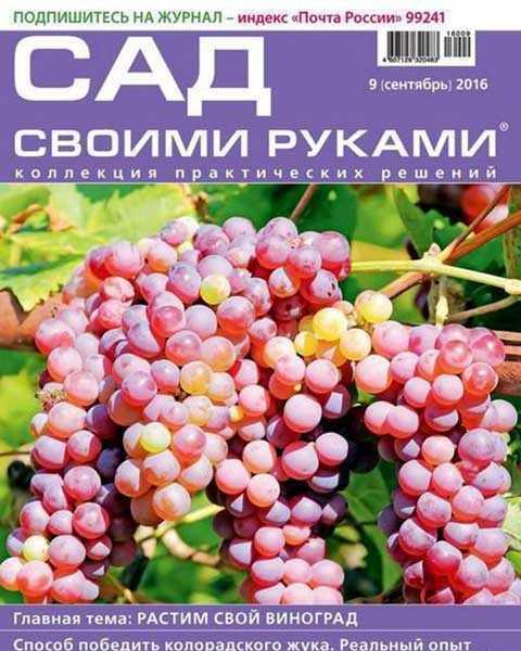 Журнал Сад своими руками №9 2016