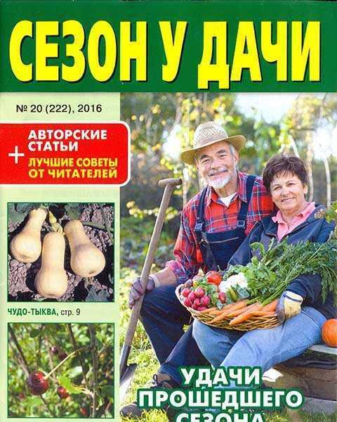 Сезон у дачи №20 (2016)