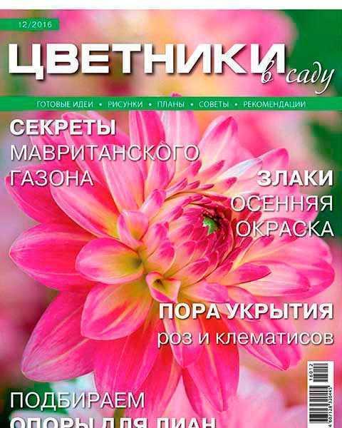 Цветники в саду №12 (2016)