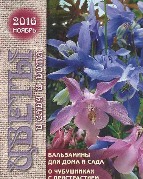 Цветы в саду и дома №11 ноябрь 2016