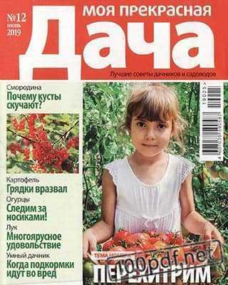 Девочка с помидорами Моя прекрасная дача №12 июнь 2019