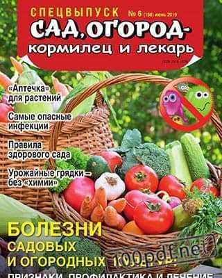 Овощи в корзине Сад, огород – кормилец и лекарь №6 СВ 2019