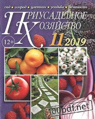 Обложка Приусадебное хозяйство №11 (2019)