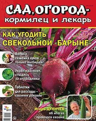 Свекла Сад, огород – кормилец и лекарь №1 2020