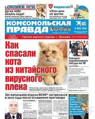Рыжий кот Комсомольская правда №15 ч (2020)