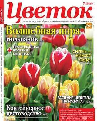 Обложка Цветок 8 2020