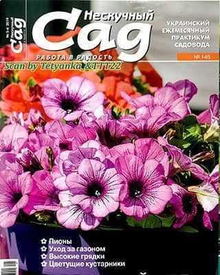 Фиолетовые цветы Нескучный сад 5 6 2019