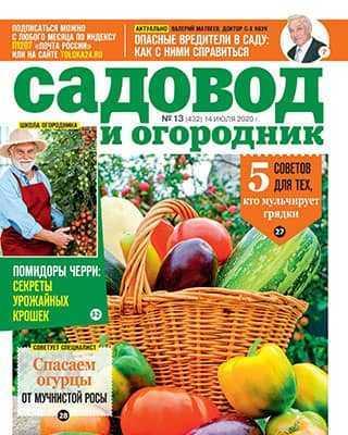 Обложка Садовод и огородник 13 2020