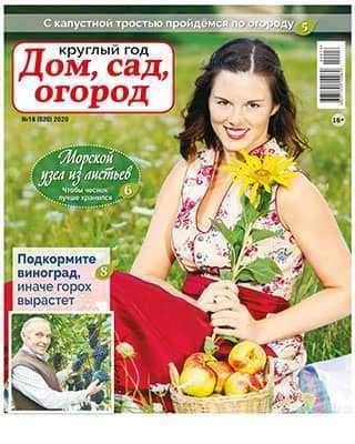 Обложка Круглый год: Дом сад огород 16 2020