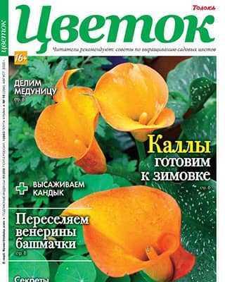 Обложка Цветок 16 2020