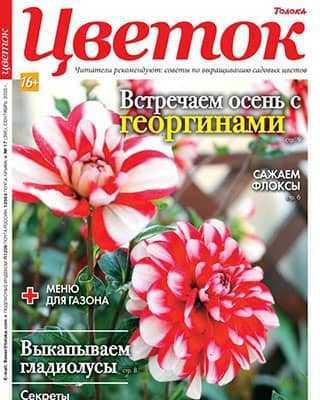 Обложка Цветок 17 2020