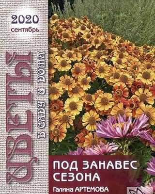 Обложка Цветы в саду и дома 9 2020
