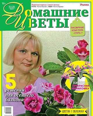 Обложка Домашние цветы 9 2020