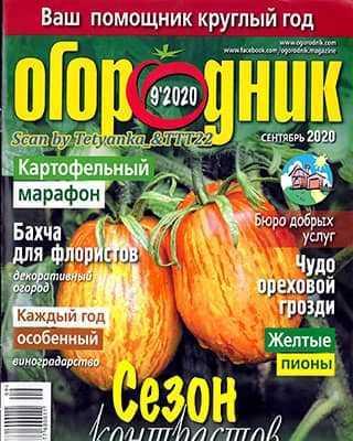 Обложка Огородник 9 2020
