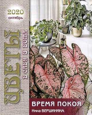 Обложка Цветы в саду и дома 10 2020