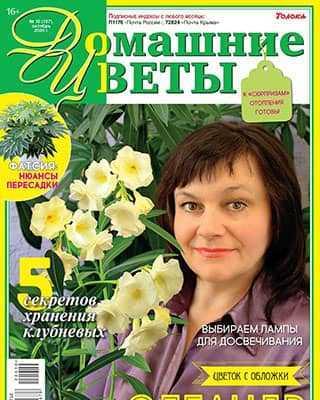 Обложка Домашние цветы 10 2020