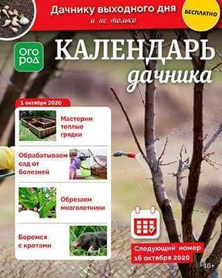 Обложка Календарь дачника 19 2020