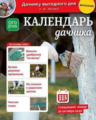 Обложка Календарь дачника 20 2020