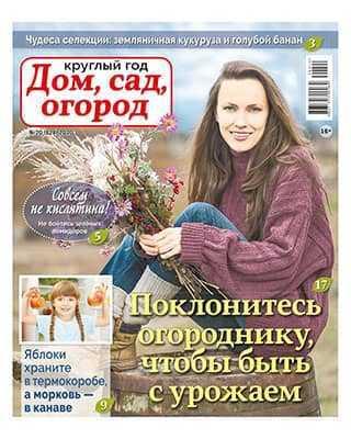 Газета Круглый год: Дом сад огород 20 2020