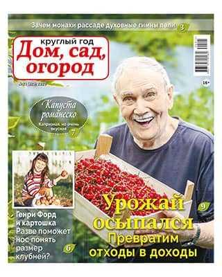 Газета Круглый год: Дом сад огород 21 2020