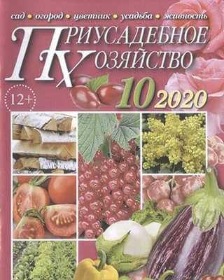 Обложка Приусадебное хозяйство 10 2020