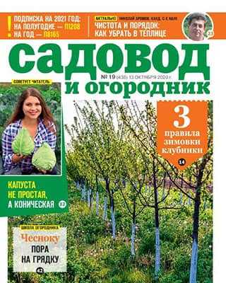 Обложка Садовод и огородник 19 2020