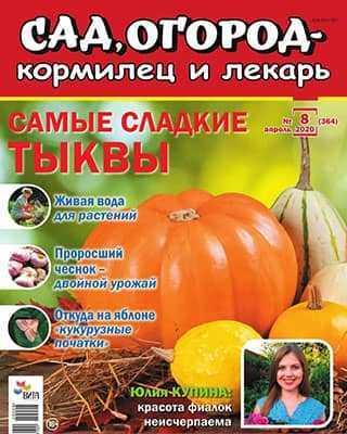 Обложка Сад, огород – кормилец и лекарь 8 2020