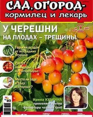 Обложка Сад огород – кормилец и лекарь 9 2020