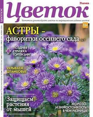 Обложка Цветок 21 2020
