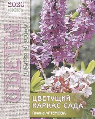 Обложка Цветы в саду и дома 11 2020