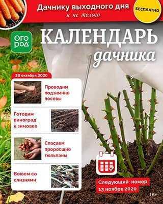Обложка Календарь дачника 21 2020